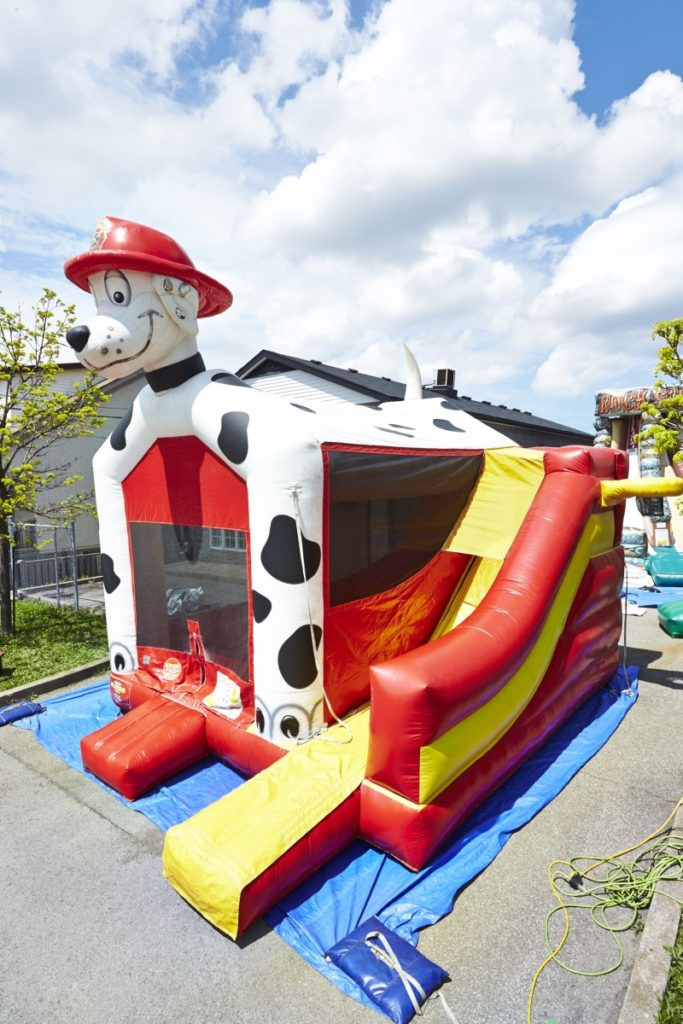 This image has an empty alt attribute; its file name is Dalmatian-Bounce-and-Slide.jpg